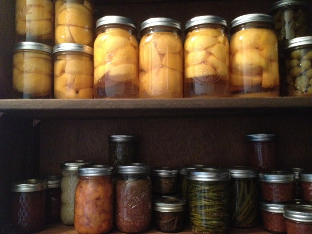 Top shelf: Peaches in light syrup, pickled green tomatoes. Bottom shelf: cranberry sauce, pears in syrup, peach-ginger pie filling, tomatillo salsa, pickled wild ramps, pickled garlic scapes, ginger-apple-pear butter.