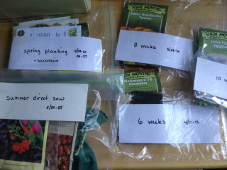 Seeds packets sorted into bags by planting date.