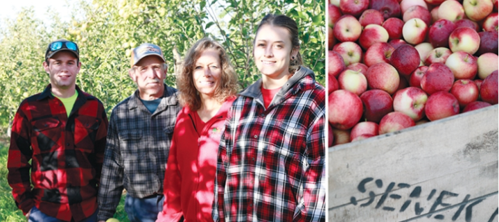 In the field: Senek Farms
